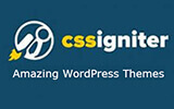 80+ Fantastic Premium WordPress themes for just $69 from CssIgniter