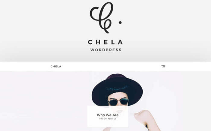 Chela - A Minimal Agency WordPress Theme